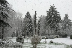 Z-inverno-3-FILEminimizer