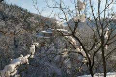 dream-inverno-sul-fiume