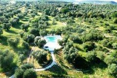 masseria_quis_ut_deus_puglia_apulia_hotel_piscina_ulivi_swimming_pool_olive_tree