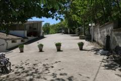 RISTORANTE-DA-LIBERATO-36