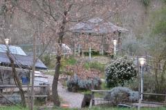 giardino-11