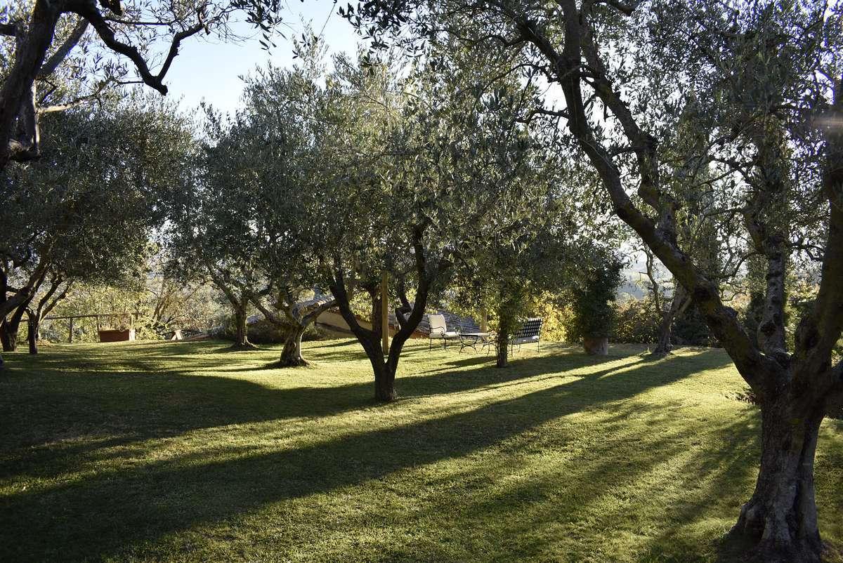 introi-villa-cicolina-07